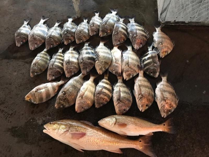 October Fishing Charter in Galveston TX